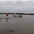 04-19-13 - Fishing Pier Butler Lake - 945 am